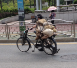 Bicycle delivery 2