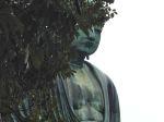 2014-09-07 Kamakura 110 Big Buddah