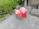 2014-09-09 Asakusa Shrine16