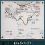 Bus routes up Namsan Mountain