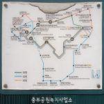 Bus routes up Namsan Mountain