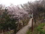 2015-04-05_RASKB_Dongmyo_019